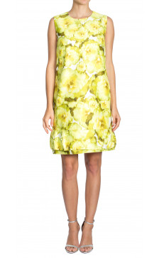 Giambattista Valli Printed Silk Dress