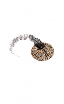 Vivienne Morgan Millinery Partridge Feather Hat